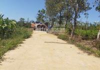 Bán đất Xuân Tây có 300m2 thổ cư, giá 550 triệu/sào, liên hệ: 090 219 2579