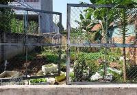 Bán đất thổ cư - 300m2, kế chợ Dĩ An, HXH đường nhựa, KDC an ninh