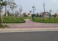 Chính chủ cần chuyển nhượng lại gần 750m2 đất biệt thự NU9 Liên Phương TH Hưng Yên, LH: 0985851298