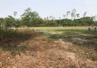 Cần bán đất nền dự án Hoà Khương