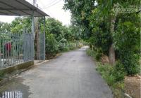 Bán nền đôi 270m2 (10x27, thổ 100%) đường Cái Môn, xã Mỹ Trà, TP Cao Lãnh