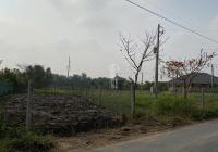 Bán đất thổ cư tại thị trấn Cần Giuộc, Long An