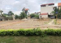 Chính chủ cần bán 60m2 đất dịch vụ khu Đầm Lau, xã Xuân Quan, huyện Văn Giang