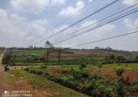 Lô mặt tiền Cao Bá Quát 14x24m 150m2 thổ cư sát ngã 3. Gần dự án Nam Phương City