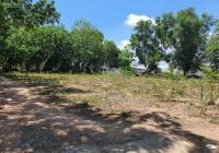 Cần bán 2 lô đất Củ Chi: MT đường Trần Thị Rộng và lô đất đường Nguyễn Thị Chì. Chính chủ