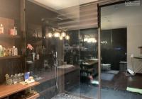 Bán căn Penthouse 481m2 chung cư Dolphin Plaza Trần Bình, giá 24 tỷ có thương lượng, LH 0965551255
