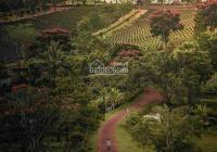 Sở hữu lô đất giá rẻ view triệu đô chỉ với 400tr. Tại TP Bảo Lộc mộng mơ