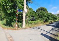 Bán đất mặt tiền đường An Sơn 20: (22 x 45 = 1.000m2) xã An Sơn, Thuận An, Bình Dương