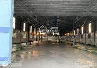 Bán kho xưởng TDT 11700 m2, Mỹ Phước Tây, Cai Lậy, Tiền Giang