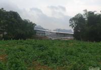 Bán trang trại sẵn tại Lương Sơn S 3,1ha đã có giấy phép hoạt động giá cực rẻ chưa đến 4 tỷ