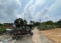 Đất An Tây 60 đường bê tông 4m, 15x100m TC 200m2 giá chỉ 4,5 tỷ, dân đông, thích hợp xây trọ, xưởng