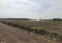 Cần bán đất gần chợ Ấp 3, Xuân Hưng, Xuân Lộc, Đông Nai, chỉ 220tr/1000m2, gần KDC, KCN, SHR