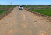Cần bán đất lúa mặt tiền nhựa ngay khu dân cư