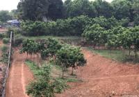 Bán 5415m2 đất thổ cư, phân khúc nghỉ dưỡng tại xã Nhuận Trạch, cạnh dự án Green Oasis Villas