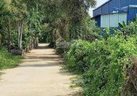 Đất bán giá tốt Hà Duy Phiên, Bình Mỹ, Củ Chi, DT: 915m2, giá 6,5 tỷ