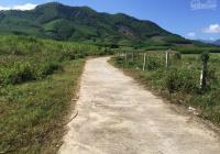 Đất Diên Tân, cách Hương Lộ 62 đúng 50m, giá đầu tư