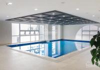 Bán căn hộ 1PN - 1WC DT 50m2 Grand Riverside, view Q1, full NT như hình, giá 2.9 tỷ