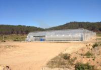 Chính chủ cần bán 56 ha đất vườn nông nghiệp view đẹp tại Đạ Nhim, Lạc Dương - Lâm Đồng