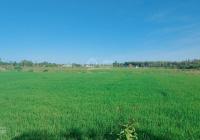 Bán đất thị trấn Đất Đỏ, Bà Rịa Vũng Tàu DTCN 710m2, thổ cư 120m2