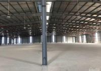 Kho xưởng KCN Đại An chính chủ cho thuê DT đa dạng 1000 - 5000m2