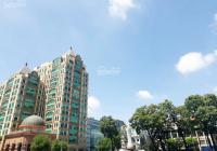 Siêu CHDV khu vực đường Mạc Đĩnh Chi - Quận 1 với giá 550 tỷ đồng, DTCN: 1107m2