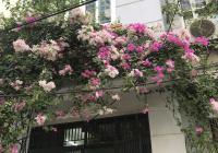 Chính chủ cho thuê nhà mặt ngõ ô tô tránh nhau, ngõ 143 Nguyễn Chính, Thịnh Liệt, Hoàng Mai, Hà Nội