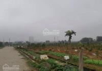 Chính chủ - bán đất đấu giá Xuân Ổ B - Bắc Ninh - rẻ nhất thị trường