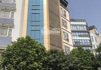 Building cực đẹp khu vực đường Trần Đình Xu - Quận 1 với giá 145 tỷ đồng, kết cấu H8T DTCN: 230.7m2
