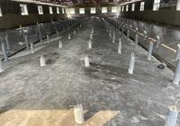 Bán trại heo 600 nái, bao gồm hệ thống chuồng trại. Cách chợ Long Hòa 5km, diện tích tổng 2,7 ha