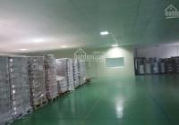 Cho thuê kho xưởng 750m2 nền Expoxy mới 100%, container vào ok. đường Thoại Ngọc Hầu, Tân Phú