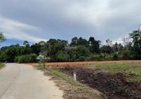 Bán 2 công đất mặt tiền đường Cây Thông Ngoài thuộc ấp Búng Gội, quy hoạch đất ở, LH 0909.074.779