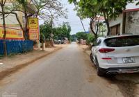 Chính chủ bán 125m2 đất sổ đỏ ngay trung tâm khu công nghệ cao Hòa Lạc, Thạch Thất, Hà Nội