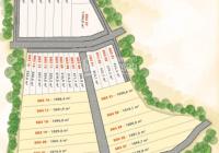 Đất nền Lộc Ninh - Bình Phước - giá 350tr/1000m2 - TC 100m2 - 0908087833