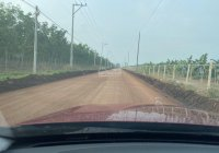 Bán đất Minh Lập - Bình Phước -DT 250m2-Giá chỉ 630tr/nền - Lh sdt 0969836153