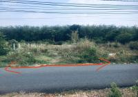 Cần bán đất 1.632m2(20x82,5) mặt tiền đường nhựa Bàu Lách, xã Phạm Văn Cội huyện Củ Chi, TP. HCM