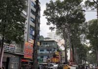 Bán nhà ngay tam giác vàng trung tâm Quận 1, Nguyễn Công Trứ 5x10m. Giá 38 tỷ
