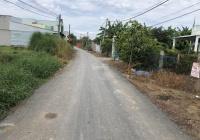 Bán đất 2MT đường nhựa xã Quy Đức Bình Chánh, DT: Ngang 18m dài 55m đất trồng cây lâu năm