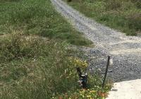 Đất đường xe tải, góc 2 mặt tiền, xã Quy Đức, Bình Chánh