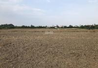 1000m2 xã Phú Hữu xe vào tận đất giá 1,2 tỷ