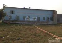 Bán đất 250m2 thổ cư gần bệnh viện Tân Tạo, chợ đêm Đức Hoà sổ hồng riêng, giá 1,65 tỷ