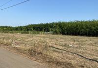 Bấn đất đầu tư ngay UBND và chợ Xuân Thành khu dân cư đông đúc, thích hợp cho các nhà đầu tư