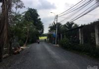 Bán lô đất thổ cư mặt tiền đường 165, Hà Duy Phiên, Bình Mỹ, KT 8x36m, TC 227m2. Giá 3.3 tỷ TL