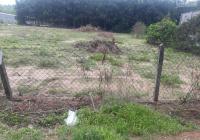 Đất mặt tiền ĐT 750, Tân Long, Phú Giáo, Bình Dương 20x32 - 100m2 TC giá chưa tới 3 tỷ. 988574866