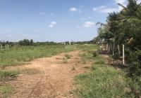Đất lớn gần bên Hồ Sen Tam Đa, Quận 9 (38 x 117m = 4.500m2 giá 5.5 triệu / m2)