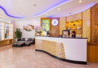 CC cho thuê khách sạn 50 phòng DT 420m2 - DTSD 2245m2 - full nội thất Nguyễn Kiệm P3, Gò Vấp, 250tr