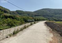 Bán đất rừng làm trang trại và khu nghỉ dưỡng tại TP Chí Linh LH 0969 723 884