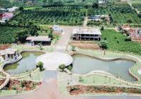 Đất nền biệt thự Bảo Lộc giá tốt nhất thị trường chỉ từ 8tr/m2, thổ cư 100%. LH xem đất 0938656857