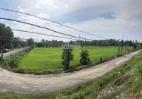 Cần bán lô đất 2MT đường N2, X. Hòa Khánh Đông, H. Đức Hoà, tỉnh Long An