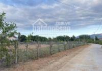 Bán lô đất làm trang trại, trồng trọt xã Suối Tiên - Huyện Diên Khánh - Nha Trang