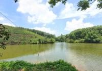 Cơ hội sở hữu ngay 3.100m2 đất thổ cư view hồ tại Lạc Thủy, Hòa Bình